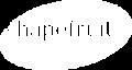 Weißes Logo der shapefruit AG - Marketingagentur